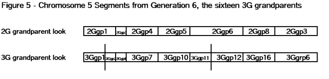 05A Figure 5