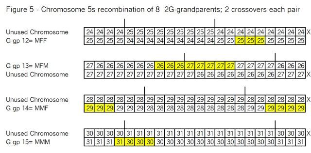 05B Figure 5